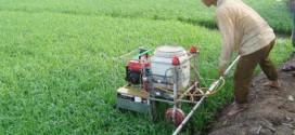 Sáng chế máy phun thuốc trừ sâu điều khiển từ xa giúp ích bà con