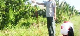 Máy phun thuốc trừ sâu dùng điện, một nông cụ an toàn hiệu quả cho nhà nông